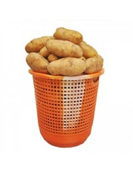 IRISH POTATO (small basket)