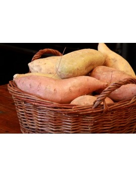 SWEET POTATO (small basket)