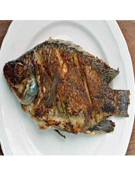 TILLAPIA FISH (WHOLE)