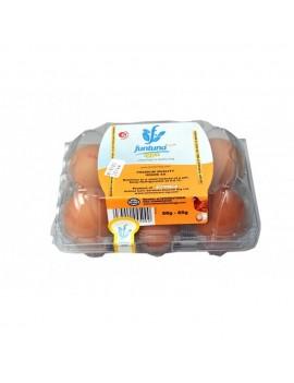 Funtuna Egg (Pack of 6)