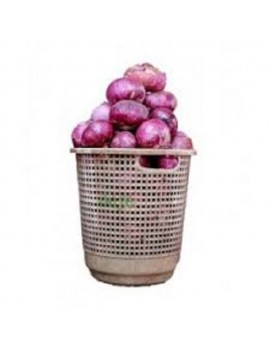 ONIONS SMALL BASKET