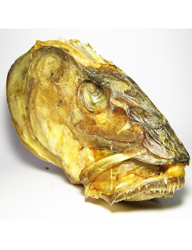 Stock Fish Head